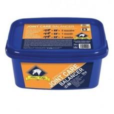 Blue Chip Super Concentrated Joint Balancer 3kg