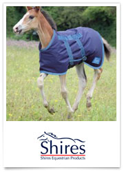Shires Rugs
