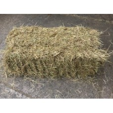 Hay Small Traditional Bale